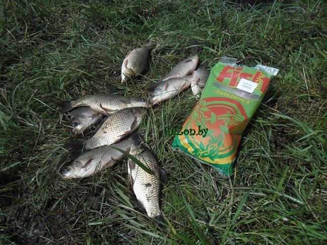 фишкорм для карася - рыбалка в минской области