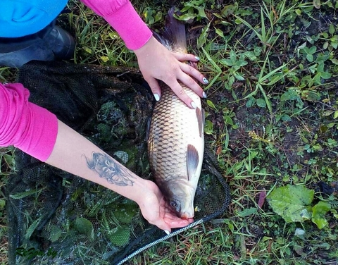 рыбалка на карпа, белого амура и толстолобика