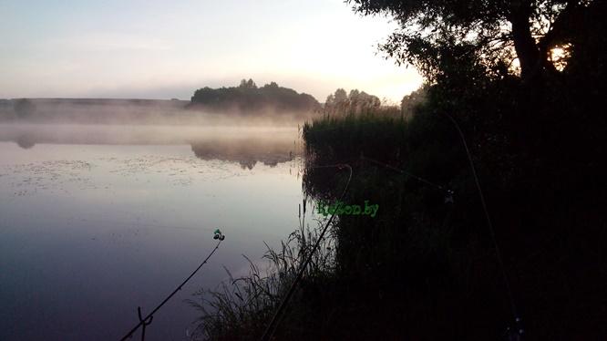 Ловля карася летом в июне в Столбцовском районе - рыбалка на ...