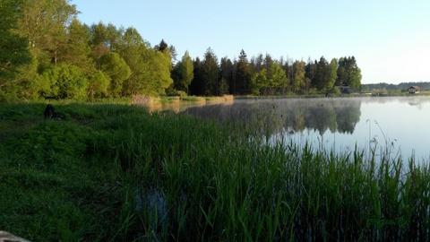 Платная рыбалка в Минской области - оторвались по карпу (отчет за ...