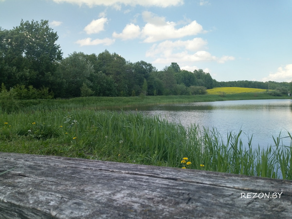Рыбалка в Беларуси 2018